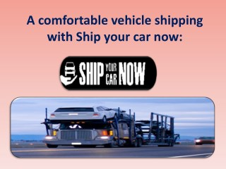 Fast, reliable and international vehicle shipping: