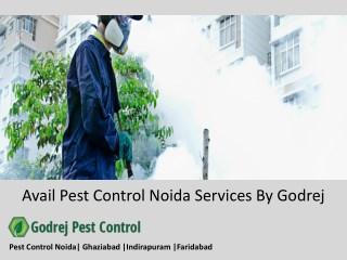 Avail Pest Control Noida Services By Godrej