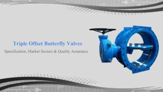 Triple offset butterfly valves specification and market sectors
