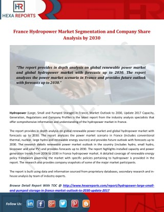 France Hydropower Market Segmentation and Company Share Analysis by 2030