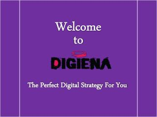 Digiena-The Leading Digital Marketing, Design and SEO Agency in London