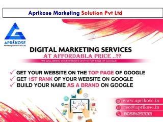 SEO Services in Jaipur | SEO Agency in Jaipur