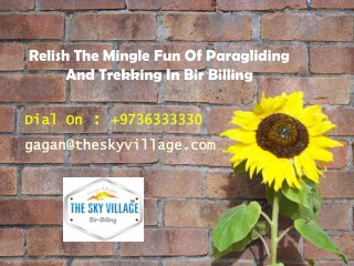 Relish The Mingle Fun Of Paragliding And Trekking In Bir Billing