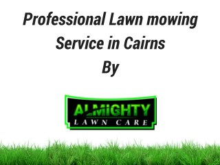 lawn and gardening service cairns