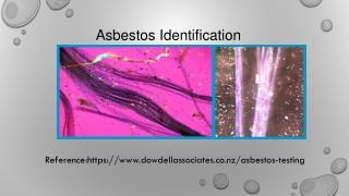 Asbestos Testing Towoomba
