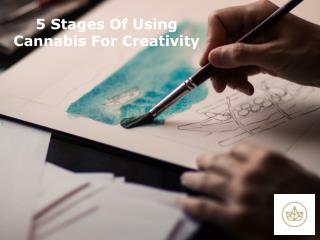 5 Stages Of Using Cannabis For Creativity | Wealth Shop