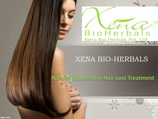 Natural Support For Hair Loss Treatment