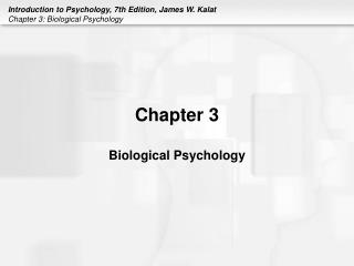 Chapter 3 Biological Psychology
