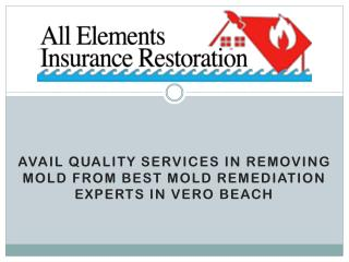 Avail Quality Services in Removing Mold from Best Mold Remediation Experts in Vero Beach