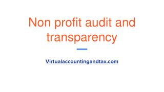 Non profit audit And Transparency | virtualaccountingandtax