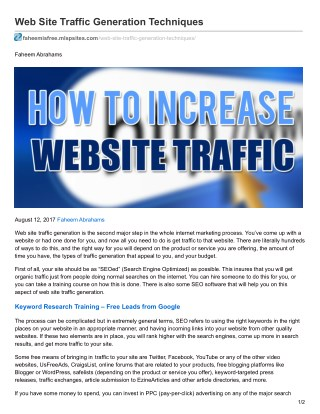 Web Site Traffic Generation Techniques