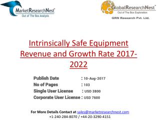 Intrinsically Safe Equipment Revenue and Growth Rate 2017-2022