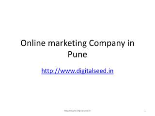 Digitalseed India is Internet marketing Company, Agency in Pune | Online Marketing Services Provider