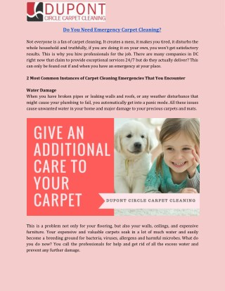Get Professionals Carpet Cleaning DC Service to Clean Your Home