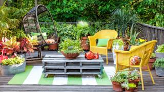 Importance Of Balcony Garden At Your Home