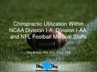 Chiropractic Utilization Within NCAA Division I-A, Division I-AA, and NFL Football Medical Staffs