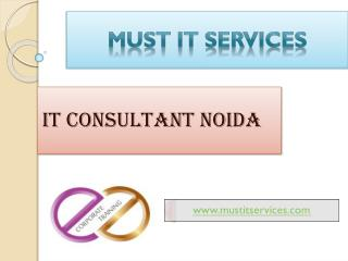 IT Consultant Services Noida
