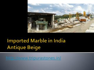 Imported Marble in India Antique Beige