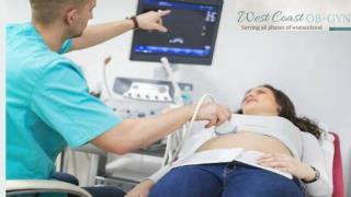 Hysteroscopy Palmetto