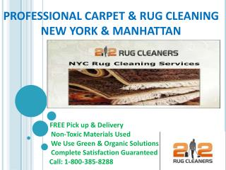 Rug cleaning ny