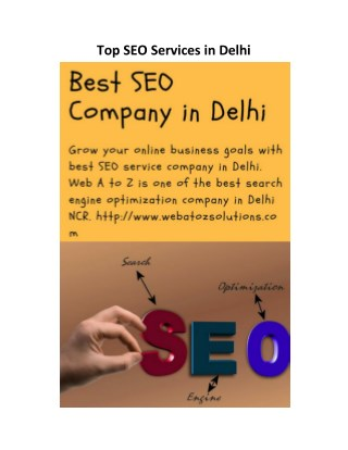Top SEO Services in Delhi