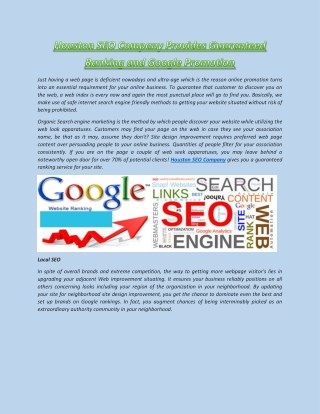 Houston SEO Company Provides Guaranteed Ranking and Google Promotion