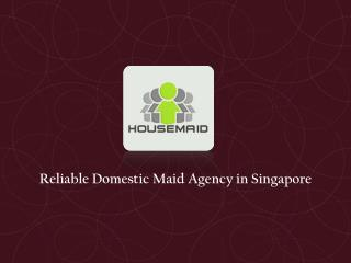 Domestic Maid Agency