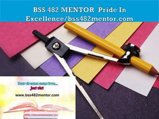 BSS 482 MENTOR  Pride In Excellence/bss482mentor.com