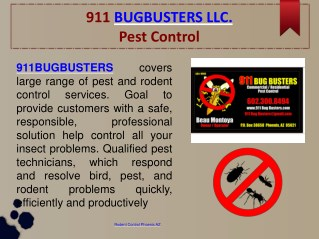 Pest, Bee, Rodent, Scorpion Control, Bed Bug Elimination and Ant Exterminator at Phoenix AZ