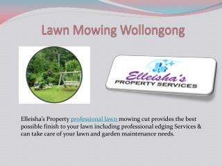 Lawn Mowing Wollongong