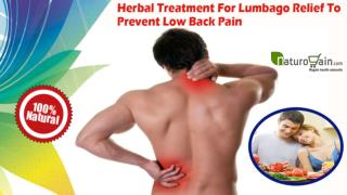 Herbal Treatment For Lumbago Relief To Prevent Low Back Pain