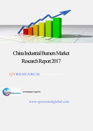 China Industrial Burners Market Research Report 2017