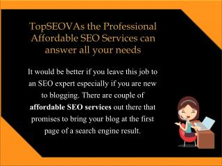 TopSEOVAs  the Professional Affordable SEO Services Can Answer All Your Needs