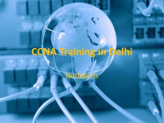 CCNA Training in Delhi | Join Hi-tech Networking Courses at Netlabsits