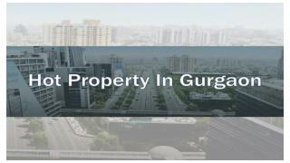 Hot Residential Property in Gurgaon