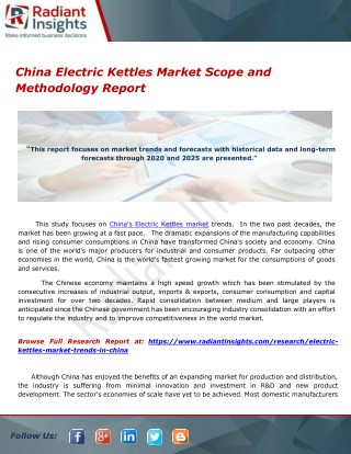 China Electric Kettles Market Scope and Methodology Report