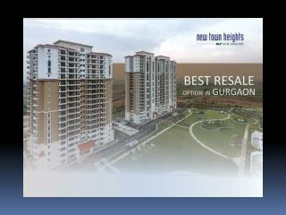 DLF New Town Heights Apartments in Gurgaon