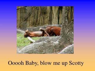 Ooooh Baby, blow me up Scotty