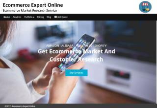Ecommerce expert online - Ecommerce market research service
