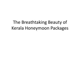 The Breathtaking Beauty of Kerala Honeymoon Packages