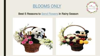 Reasons to Send Flowers in Rainy Season – Blooms Only