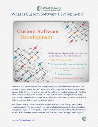 Custom Software Development in India - Merak Infoway