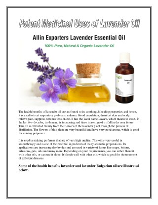 Potent Medicinal Uses of Lavender Oil
