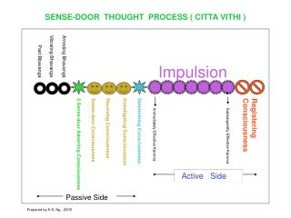 SENSE-DOOR  THOUGHT  PROCESS ( CITTA VITHI )