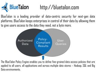 Big Data-centric security of Blutalon