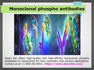 Phospho flow