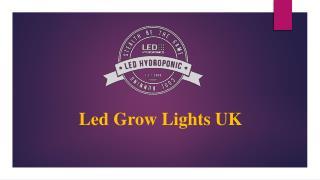 Led Grow Lights UK