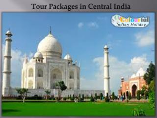 Tour Packages in Central India