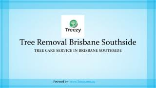 Tree Removal Brisbane Southside