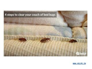 4 steps to clear your couch of bed bugs